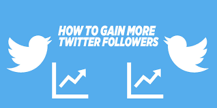 How to gain more Followers Twitter: Optimize your profile