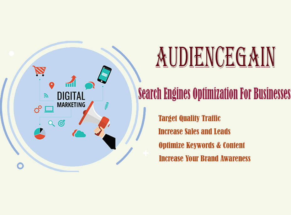 Search Engine Optimization For Businesses - Audiencegain net