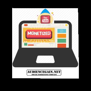Monetized YouTube Channel