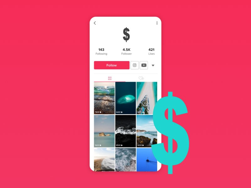 essential-to-look-out-for-fake-TikTok-accounts-for-sale