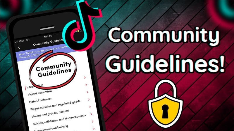 successful-TikTok-account-TikTok's-Community-Guidelines